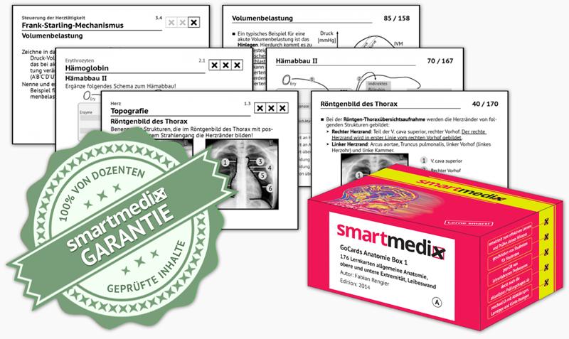 smartmedix academy Inhalte
